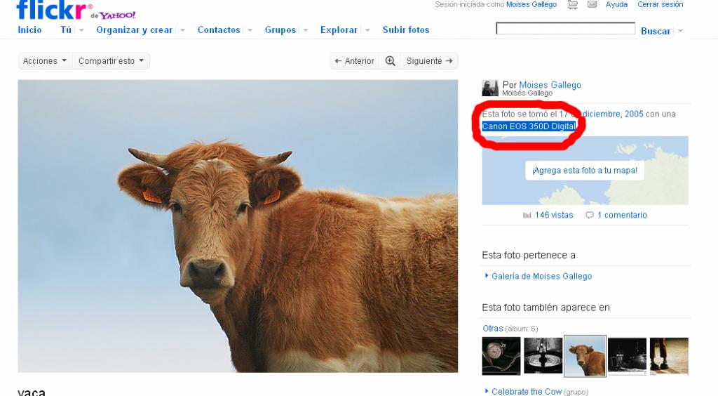 exif flickr